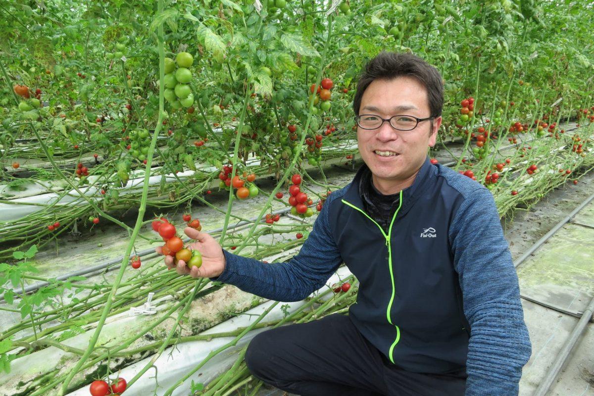 経営者に憧れトマト農家へ。新規就農と事業継承を両立する元銀行マンの挑戦